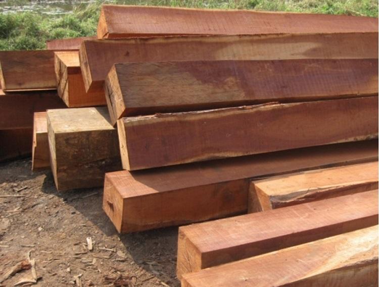 Khung sofa được làm bằng gỗ tự nhiên