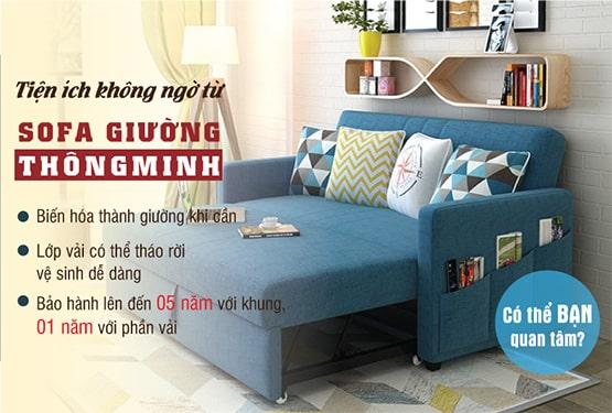 Banner sofa giường